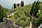 Looking down on Varenna, Italy a town on Lake Como from the castle tower while a falcon circles back to his trainer during a bird's of prey show.