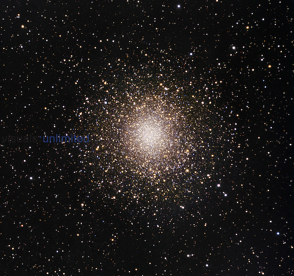 M14 (NGC 6402) is one of the brighter globular clusters and is unusual for its slightly elliptical shape. It is estimated to have an absolute luminosity 400,000 times greater than our sun. M14 is rich in variable stars is one of Charles Messier's first discoveries in 1764. M14 is one of the few globular clusters to host a nova retrospectively discovered in 1964 by Amelia Wehlau of the University of Western Ontario who surveyed photographic plates taken in 1938.