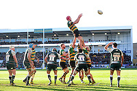 Christian Day of Northampton Saints rises high to win lineout ball. Aviva Premiership match, between Northampton Saints and Leicester Tigers on April 16, 2016 at Franklin's Gardens in Northampton, England. Photo by: Patrick Khachfe / JMP
