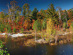 Beaver house in a pond. Beautiful fall nature scenery. Killarney Provincial Park, Ontario, Canada