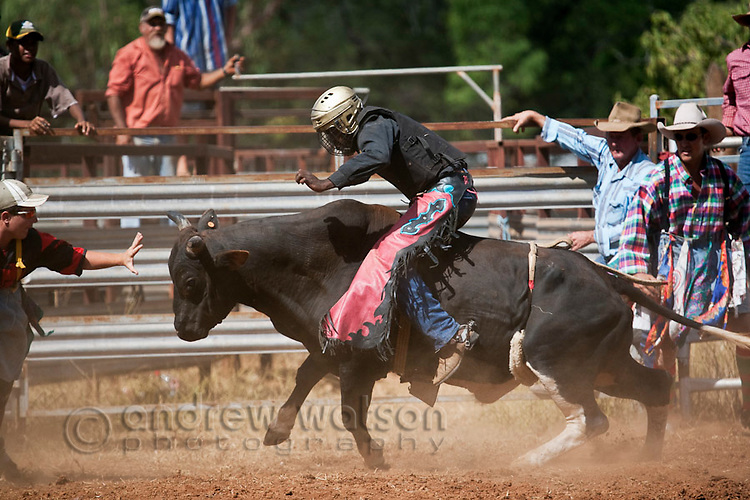 Indigenous cowboy in bull riding competition.  Chillagoe Rodeo, Chillagoe, Queensland, Australia