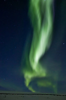 Aurora borealis streams down over the trans Alaska oil pipeline in the Arctic coastal plains, Arctic Alaska.