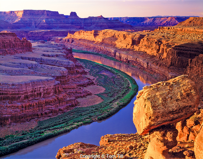 Colorado River Seen from the White Rim at Sunrise, Canyonlands National Park, Utah