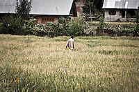 """Kashmiri Muslim men walks across a crop field towards Dolipora village in Lolab valley, northern Kashmir. The bottom of the valley, as well as the entrance to it, is under control by Indian army, but the Islamist militancy is spread out in the surrounding mountains. By its beauty, spirituality and cultural treasures, Kashmir is considered """"the crown of India"""", but it is a crippled place strained under rigid siege imposed by Indian rule. Kupwara district, Indian administrated Kashmir."""