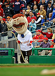 13 April 2008: Washington Nationals' Mascot Teddy Roosevelt holds a hockey stick recognizing the Washington Capitals in the NHL Playoffs, as he participates in crowd entertainment during a game between the Atlanta Braves and the Washington Nationals at Nationals Park, in Washington, DC. The Nationals ended their 9-game losing streak by defeating the Braves 5-4 in the last game of their 3-game series...Mandatory Photo Credit: Ed Wolfstein Photo