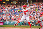 22 May 2015: Washington Nationals outfielder Bryce Harper at bat against the Philadelphia Phillies at Nationals Park in Washington, DC. The Nationals defeated the Phillies 2-1 in the first game of their 3-game weekend series. Mandatory Credit: Ed Wolfstein Photo *** RAW (NEF) Image File Available ***