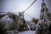 Niegowa 01.2010 Poland<br /> Three atmospheric forces: rain, snow and frost have changed into an ecological disaster the Myszkowski district in the Czestochowskie province, located 230 kilometers south of Warsaw. Almost 95% of all trees are down.Thousands of homes are left without electricity.<br /> Photo: Adam Lach / Napo Images for Newsweek Polska<br /> <br /> Wstepnie &quot;tylko&quot; 95% scietych drzew w dwoch powiatach. 0.5 miliona metrow szesciennych zniszczonych lasow..Tysiace gospodarstw bez pradu. Wszyscy maja swiadomosc, ze na kumulacje trzech niekorzystnych .zjawisk atmosferycznych rady nie ma.Trzy zjawiska kt&oacute;re zamienily jeden z obszarow Polski w istna katastrofe ekologiczna: deszcz, snieg i szadz.<br /> Fot: Adam Lach / Napo Images dla Newsweek Polska