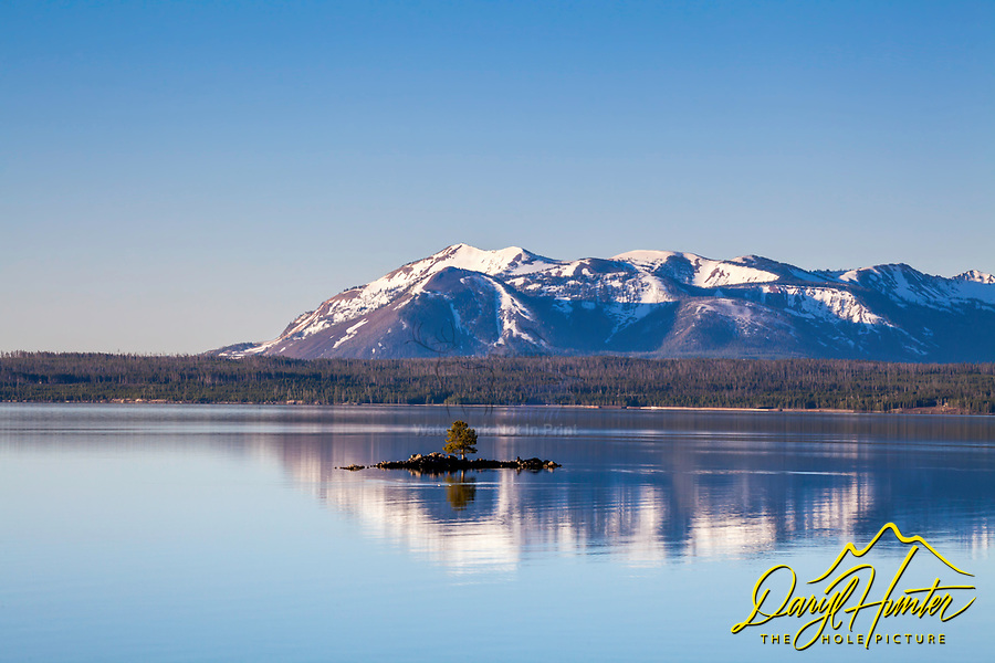 Yellowstone Lake's Dot Island engulfed by the reflection of Mt. Sheridan upon the calm water.  A picture perfect day in Yellowstone National Park