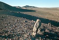 Atacama Desert near Baquedano in Antofagasta Province, northern Chile.