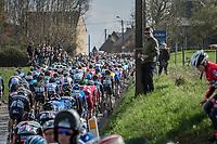 peloton over the Holleweg<br /> <br /> 72nd Dwars Door Vlaanderen (1.UWT)<br /> 1day race: Roeselare &rsaquo; Waregem BEL (203.4km)