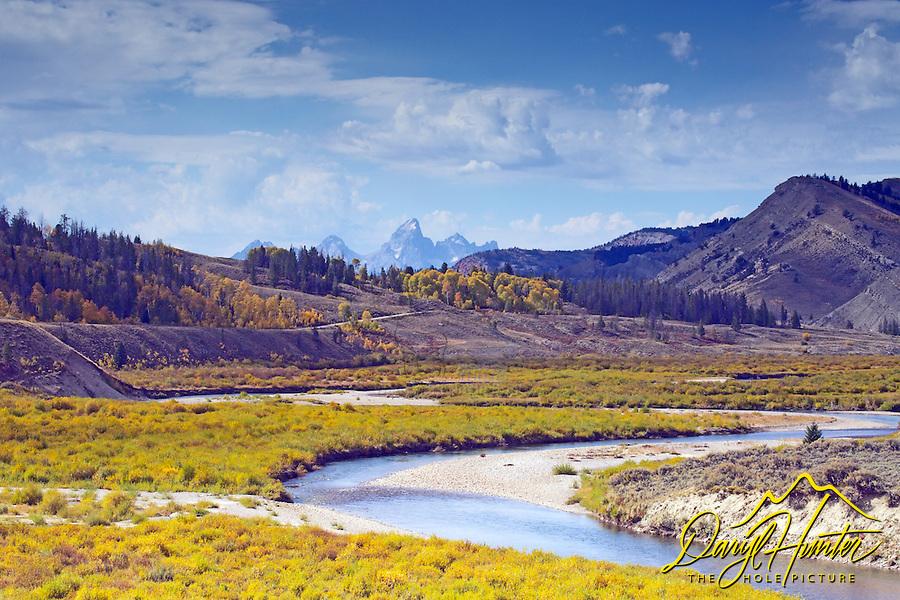 Autumn Color, Grand Tetons, golden aspens, Gros Ventre River Valley, Jackson Hole, Wyoming
