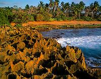 Limestone formations Near Arecibo, Puerto RIco  Tuna Point  Atlantic Ocean