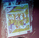 An evidence photo of a plastic bag containing &quot;Halloween cartoons&quot; pinned to a tree is displayed during the trial of sniper suspect John Allen Muhammad in courtroom 10 at the Virginia Beach Circuit Court in Virginia Beach, Virginia on October 30, 2003. <br /> Credit: Adrin Snider - Pool via CNP