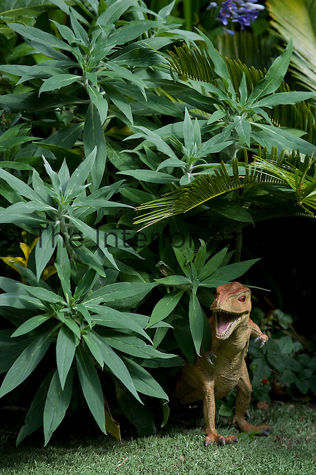 A toy dinosaur emerging from the flowerbed