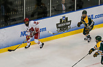 ST CHARLES, MO - MARCH 19:  Annie Pankowski (19) of the Wisconsin Badgers looks to center the puck during the Division I Women's Ice Hockey Championship held at The Family Arena on March 19, 2017 in St Charles, Missouri. Clarkson defeated Wisconsin 3-0 to win the national championship. (Photo by Mark Buckner/NCAA Photos via Getty Images)
