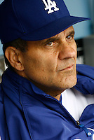4 June 2008: Manager Joe Torre #6 for the Los Angeles Dodgers of MLB National League in action during a 2-1 loss to the Colorado Rockies on Wednesday at Dodger Stadium. ***EDITORIAL USE ONLY***