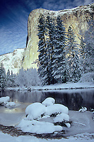 Fine art winter nature scene of El Capitan in Yosemite Valley National Park, California, U.S.A., looking across the Merced River as morning sun falls upon El Capitan with a blue sky and white clouds background, just after a fresh overnight snowfall adorning the pines and grass mounds in the Merced River.