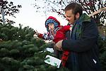 Kiwanis Tree Lot