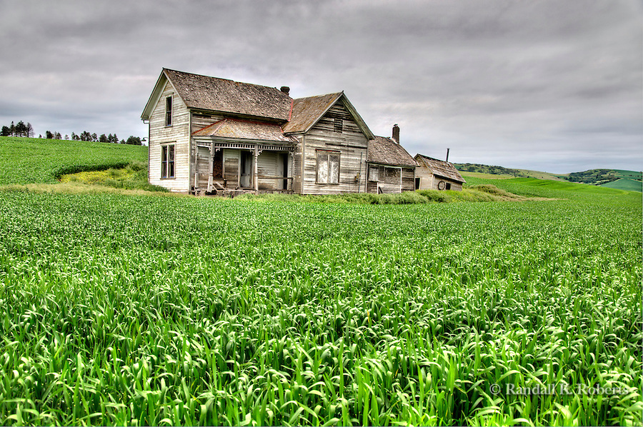 An abandoned Victorian house is surrounded by a wheat field in the Palouse Country, Eastern Washington.
