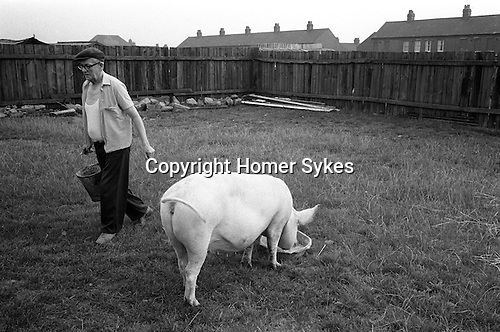 Miner and his pig. South Kirkby Colliery, Yorkshire England. Coal Miners story 1979. IF YOU KNOW THE NAMES OF ANY OF THE MEN IN THESE IMAGES PLEASE LET ME KNOW, I WOULD LIKE TO BE ABLE TO PUT A NAME TO A FACE. THANKS.