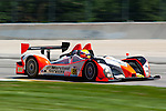 #89 Intersport Racing Oreca FLM09: Clint Field, Chapman Ducote, David Ducote