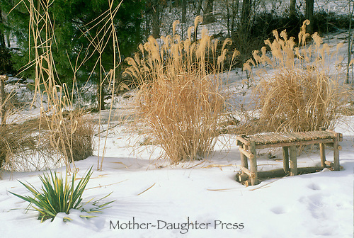 In winter you can see the gardens bones and decorative touches