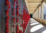 The Roll of Honour at the Australian War Memorial in Canberra, ACT, Australia