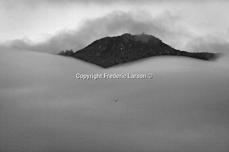 The morning Mill Valley fog nearly covered the top of Mount Tamalpais, California.