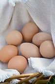 Stock Photos of Organic Eggs