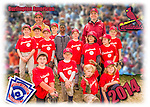 2014 Burlington American Cardinals
