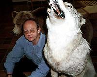 Kjetil Bevanger, forskningssjef Avd. for terrestrisk økologi, Nina. Utstoppet ulv slått ihjel ved Jiesjavrre, Kautokeino 21.04.1974