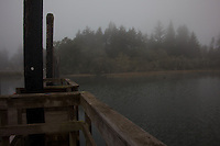 From the far end of the boat launching dock - predawn fog drapes and veils the shore at  Siltcoos Lake south of Florence, Oregon.
