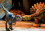 A baby Tyrannosaurus (L)  dodges an Ankylosaurus's tail at the Tacoma Dome in Tacoma, Washington on July, 11, 2007.  The 90-minute show, Walking with Dinosaurs - The Live Experience, based on the award-winning BBC Television series kicked off it's seven city Summer tour in the U.S. and Canada. In the background is Huxley, the paleontologist, played by Jonathan Bliss. (&copy; 2007 Jim Bryant Photography).