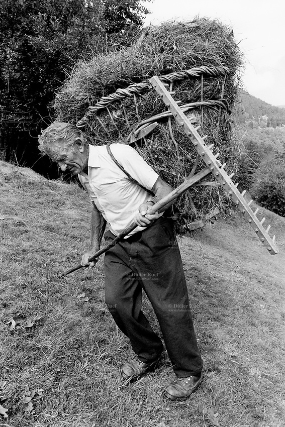 "Switzerland. Canton Graubunden. Soglio. Bregaglia valley. Making hay. An old man carries on his back hay in a wood basket, called "" campache"". Manual labor. Labour force. Pasture. Swiss alpine farmers. Alps mountains peasants. © 1993 Didier Ruef"