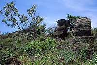 Rock outcrop  with cerrado vegetation (wooded savanna) in Parque Estadual (State Park) dos Pireneus, Brazilian Highlands, Goiás, Brazil