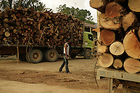 Logging company Asia Pulp and Paper (APP) is one of the largest producers of timber pulp and paper products. The raw material for these product are the natural rainforests of Indonesia and timber grown in monoculture plantations that were once biodiverse and ecologically important rainforests. APP operates timber pulp plantations in Sumatra, Borneo, and Papua, where APP converts rainforests into plantations at a rapid rate with significant social and environmental impacts.