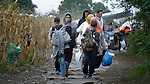 Refugees and migrants on their way to western Europe approach the border into Croatia near the Serbian village of Berkasovo.
