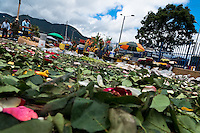 Leaves and colorful rose petals are seen lying on the ground in the flower market of Bogota, Colombia, 10 July 2010. Colombia is one of the world leaders in cut flower industry. The advantage of the moderate sunny climate, very cheap labor force in combination with the absence of social laws and environmental regulations have created perfect conditions for the cut flower production. Flower growing is very fragile and necessarily depends on irrigation and chemical maintenance, provided by highly toxic pesticides. About 110.000 workers in Colombia, working mainly for living minimum wage, keep the floral industry going and saturate the market generated by consumerist culture the US, Canada and Europe.