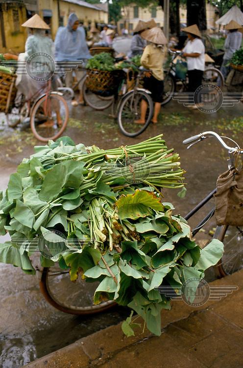 Green leaf vegetables on sale at the Hanoi market.