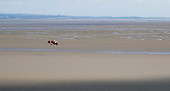 Microlight flying low over Morecambe Bay, Lancashire, UK.