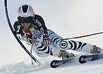 Ski Alpin Weltcup 2004/2005