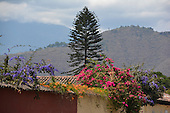 Visions of Guatamala