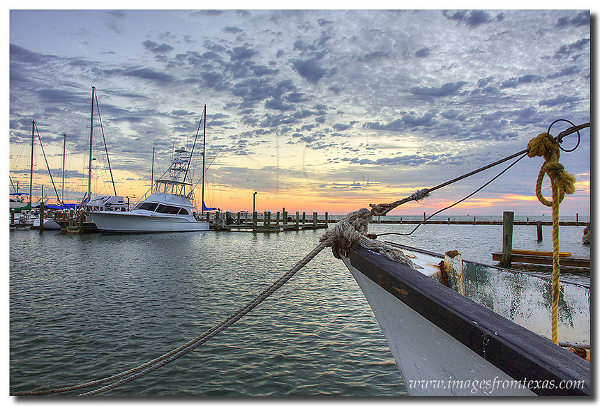 Colors begin to light up the harbor in Rockport, Texas. This photograph shows the boats lined up in the early morning hours. Waiting for the shrimp boats to return, the gulls were pacing impatiently behind me. Maybe they thought I was one of the shrimpers?