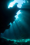 Bligh Waters, Vatu I Ra Passage, Fiji; light rays streaming in from above the cathedral at the E6 dive site