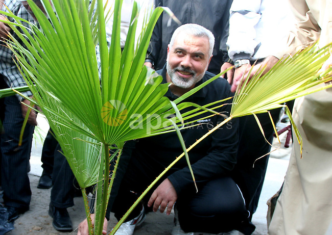 "Palestinian prime minister in Gaza Strip, Ismail Haniya plants a tree during the project entitled ""Gaza is the most beautiful despite the blockade""  in Gaza city on May 02, 2011. Haniya condemned on Monday the U.S. killing of al-Qaida chief Osama Bin Laden. Photo by Mohammed Asad"