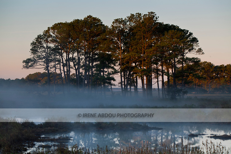 At sunrise, mist floats above the waters of the Chincoteague National Wildlife Refuge on Assateague Island, Virginia.