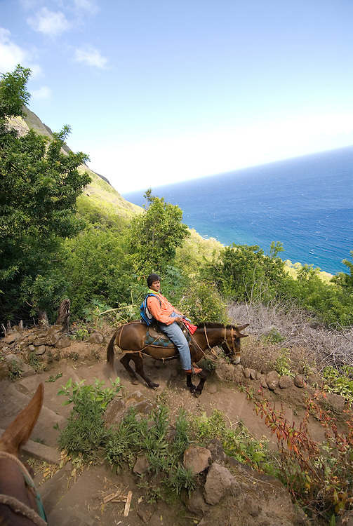Hawaii: Molokai, the Mule Ride from the cliff tops down 1,600 feet to the leper colony at Kalaupapa..Photo himolo148-72222.Photo copyright Lee Foster, www.fostertravel.com, lee@fostertravel.com, 510-549-2202