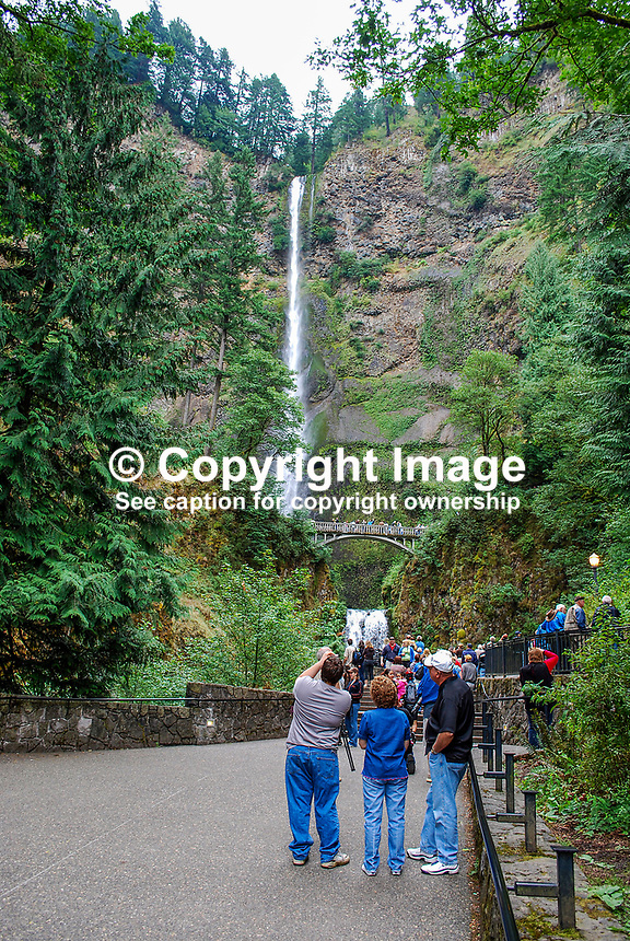 Multnomah Falls, Columbia River Gorge, Oregon, USA, 200809010803..Copyright Image from Victor Patterson, 54 Dorchester Park, Belfast, N Ireland, BT9 6RJ...Tel: +44 28 9066 1296.Mob: +44 7802 353836.Email: victorpatterson@mac.com..IMPORTANT: Please go to www.victorpatterson.com and click on my Terms and Conditions of use.