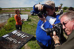 Members of the media photograph frozen juvenile salmon, left, from 40 days previous, and right, after 40 days in a rice field on Knaggs Ranch near Woodland, California, March 23, 2013. Research by UC Davis Center for Watershed Sciences, conservation science and advocacy organization California Trout, and the California Department of Water Resources shows that salmon raised in a floodplain have higher growth rates than those in a river or hatchery.