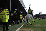 Brentford 0 Doncaster Rovers 1, 27/04/2013. Griffin Park, League One. Griffin Park hosts a showdown between two clubs aiming for automatic promotion from League One. Police horses restore order after a dramatic conclusion to the game. Photo by Simon Gill.